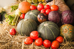 Colorful Autumn vegetables and fruits/harvest Royalty Free Stock Photography