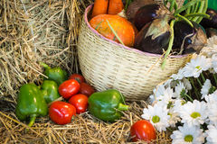 Colorful Autumn vegetables and fruits/harvest Royalty Free Stock Image