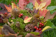 Colorful autumnal background Stock Photo