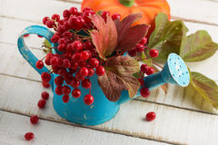 Colorful autumnal berries and leaves Stock Photography
