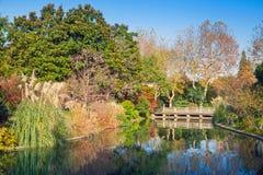 Colorful autumnal Chinese park landscape Stock Photos