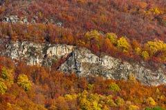 Colorful autumnal landscape Stock Image