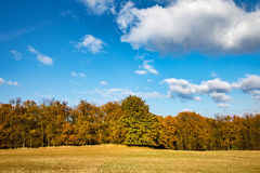 Colorful autumnal landscape with meadow, trees and blue sky Stock Photography