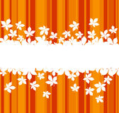 Colorful autumnal leaves background. Autumnal  leaves background with frame for seasonal design Royalty Free Stock Photos