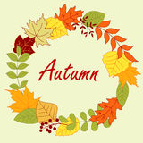 Colorful autumnal leaves frame or wreath Stock Images