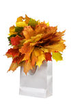 Colorful autumnal leaves in silver paper bag Royalty Free Stock Photos