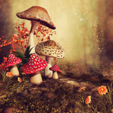 Colorful autumnal mushrooms Stock Photo