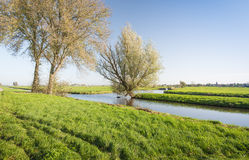 Colorful autumnal polder landscape in the Netherlands Royalty Free Stock Photo