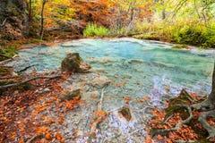 Colorful autumn landscape at urederra source, Spain. Colorful autumnal scene at clear natural spring of urederra Stock Image