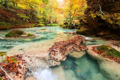 Colorful autumn landscape at urederra source, Spain. Colorful autumnal scene at clear natural spring of urederra Stock Photography