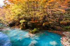 Colorful autumn landscape at urederra source, Spain. Colorful autumnal scene at clear natural spring of urederra Royalty Free Stock Images