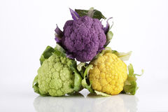 Colorful Baby Cauliflower Stock Images