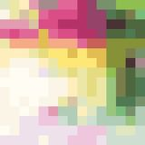 Colorful background. Vector background. You can use for greeting someone Stock Images