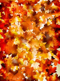 Colorful background of autumn leaves. EPS 10 Stock Photography