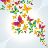 Colorful background with butterfly. Stock Photos