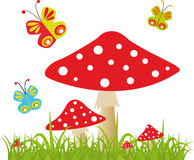 Colorful background with butterfly and amanita Stock Image