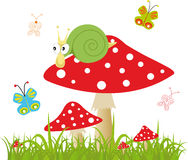 Colorful background with butterfly and amanita Royalty Free Stock Image