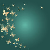Colorful background with butterfly. Vector Illustr Stock Image