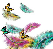 Colorful  background with ferns and butterflies Royalty Free Stock Photo