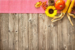 Colorful background for Halloween and Thanksgiving Royalty Free Stock Photos
