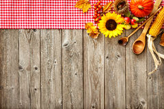 Colorful background for Halloween and Thanksgiving Stock Images
