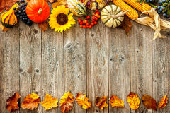 Colorful background for Halloween and Thanksgiving Stock Photography