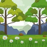 Colorful background with landscape of mountains trees and field with daisy flowers. Vector illustration Stock Images