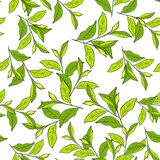Colorful background with leaves. Seamless pattern for your design wallpapers, pattern fills, web page backgrounds, surface textures Royalty Free Stock Images