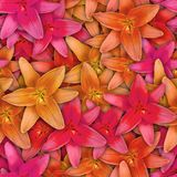 Colorful background with Lily flower. Seamless pattern.  stock photo