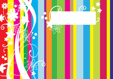 Colorful background with lines. Colorful background with colour lines and white flowers Royalty Free Stock Photos