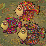 Colorful background  of a lot of beautiful decorative fishes Royalty Free Stock Images