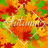 Colorful background with maple leaves and lettering Autumn Stock Photography