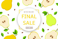 The colorful background with pears. Final Sale poster, banner. Vector illustration Stock Photography