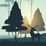 Colorful background with sunrise landscape of forest with trees and deer. Vector illustration Stock Images