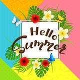 Colorful background and text Hello Summer with flowers Royalty Free Stock Photo