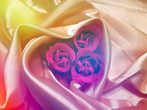 Colorful background for Valentine`s day. Colorful festive background with roses on drapery silk Stock Image