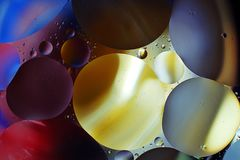 Colorful background from water drops. And oil Royalty Free Stock Photo