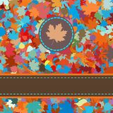 Colorful backround of fallen autumn leaves. EPS 8 Stock Photo