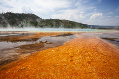 Colorful bacteria mat surrounding Grand Prismatic Spring Stock Photos