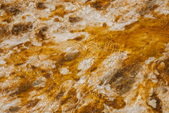 Colorful bacteria mat surrounding Grand Prismatic Spring. Midway Geyser Basin, Yellowstone National Park, Wyoming Stock Image
