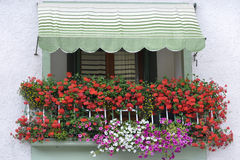 Colorful balcony with flowers in Italy. Balcony with flowers in a small Italian town royalty free stock photo