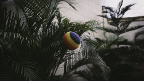 Colorful ball in palm fronds Stock Photos