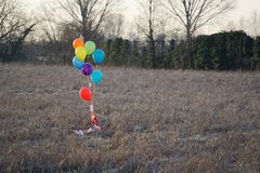 Colorful balloon in the autumn field. Funny mood, prepare for celebrating, holiday event or party.  Royalty Free Stock Photo