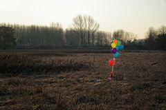 Colorful balloon in the autumn field. Funny mood, prepare for celebrating, holiday event or party.  Stock Image