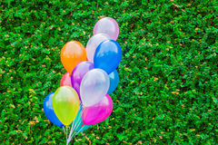 Colorful balloon Stock Image