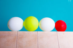Colorful balloons at hotel swimming pool Stock Photography