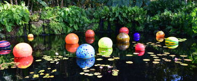 Colorful Balloons in the Pool Stock Images