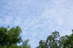 Colorful balloons and a seagull in the sky Royalty Free Stock Photos