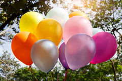 colorful balloons with sky and trees. Stock Images