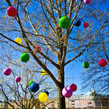 Colorful balloons in a tree. Nineteen colorful balloons in a tree royalty free stock images